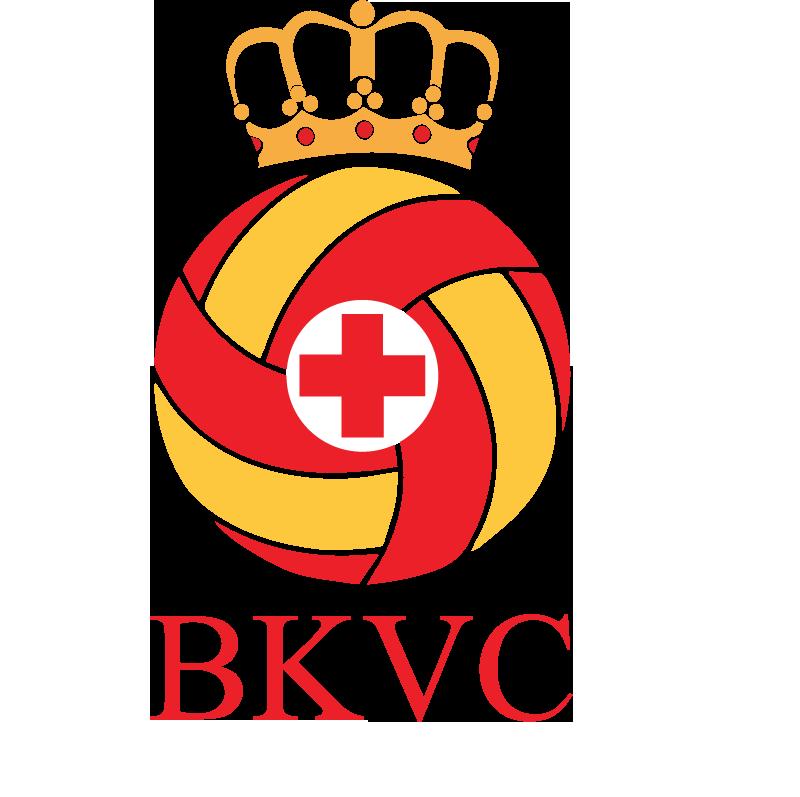 BKVCn-3 (4).png